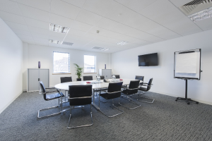 Arena Business Centre, Basingstoke - Meeting Room